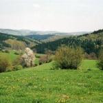 a8-zurst-delle-011