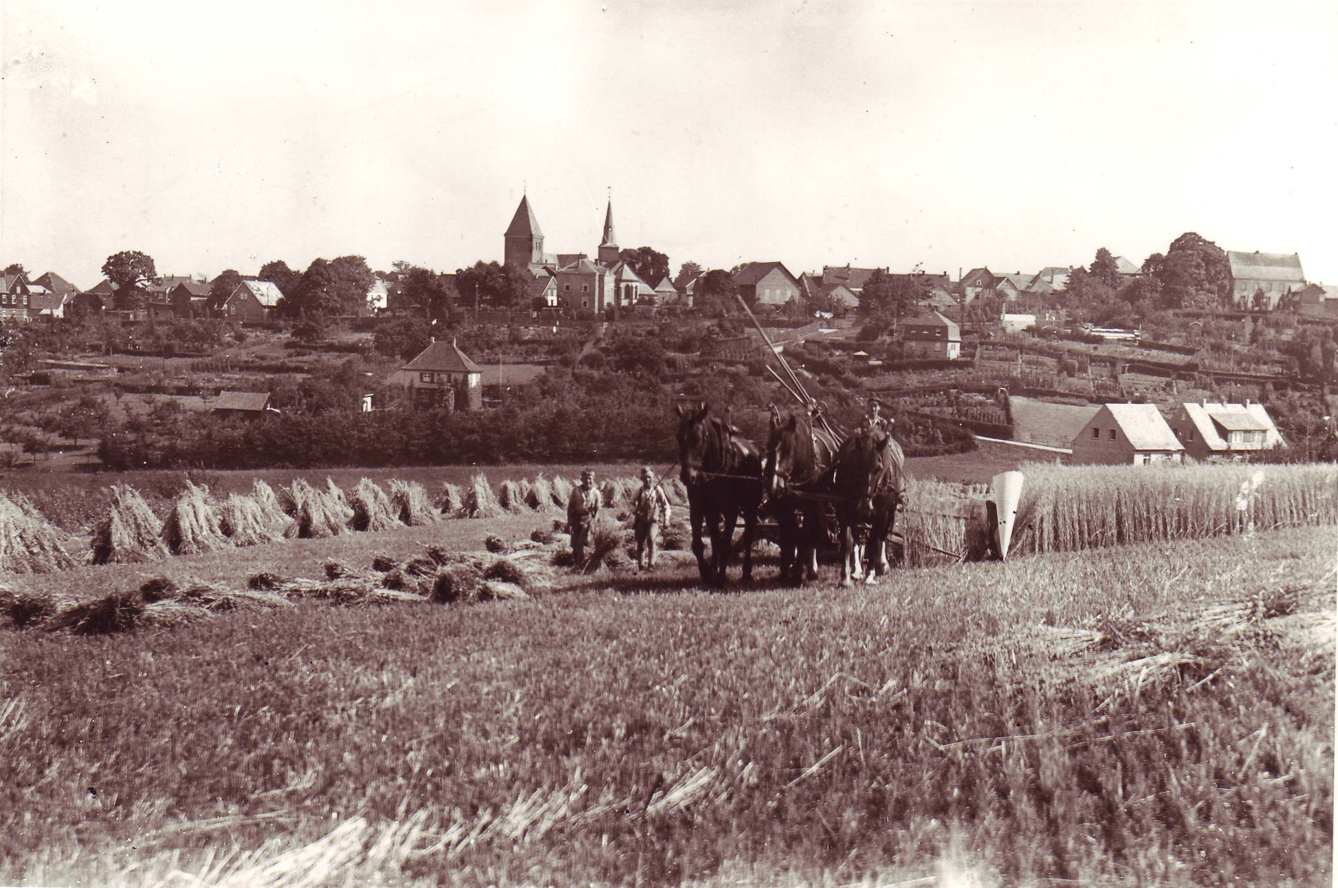 Ernte auf der Haard 1928