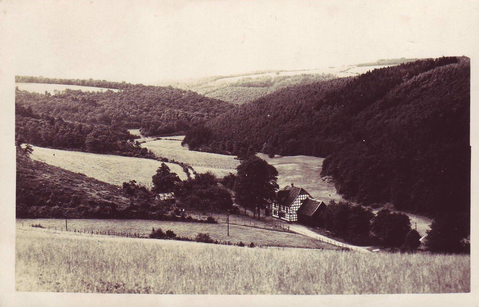 Steinbachtal 1928