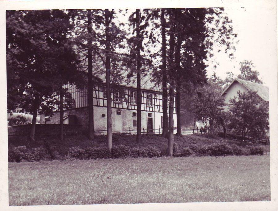 hof-wittenstein-in-der-saale-1952