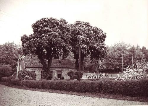 schule-am-stoecken-um-1950