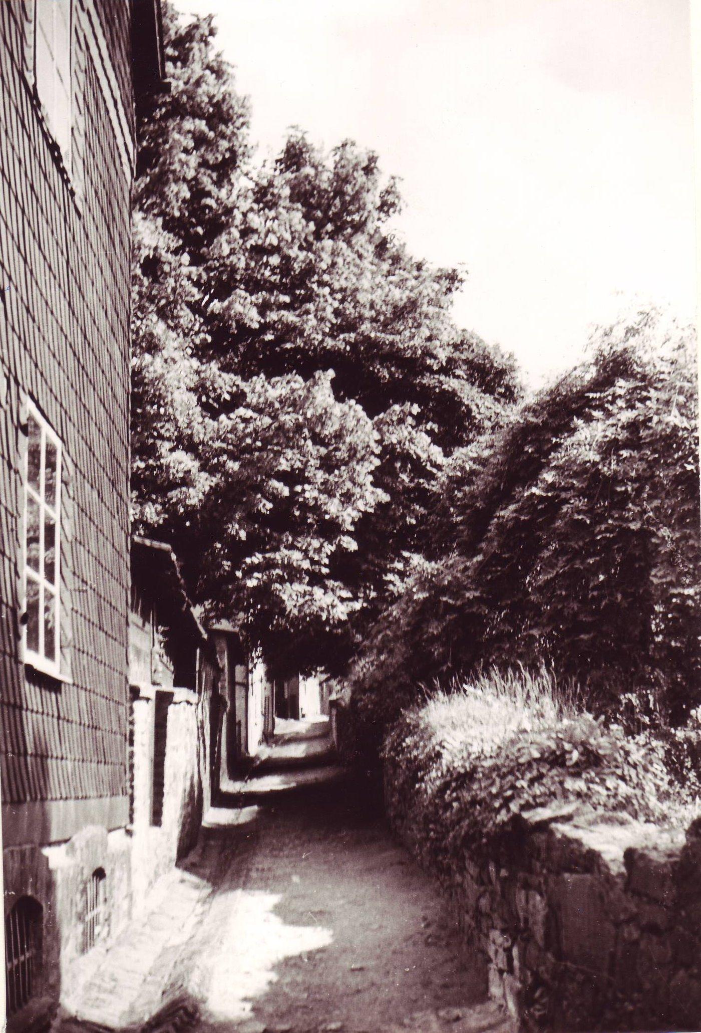 Alter Wehrgraben 1937