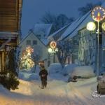 br-winter-show-005