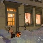 br-winter-show-011