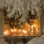 br-winter-show-013