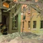 br-winter-show-014