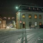 br-winter-show-100