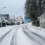 br-winter-show-121