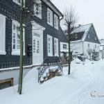 br-winter-show-122