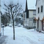 br-winter-show-124