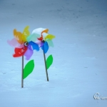 br-winter-show-127