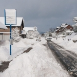 br-winter-show-134