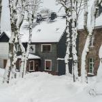 br-winter-show-139