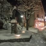 br-winter-show-162