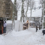 br-winter-show-166