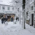 br-winter-show-167
