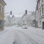 br-winter-show-171