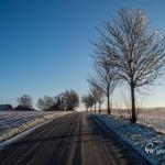 br-winter-show-232