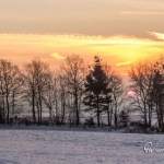 br-winter-show-241